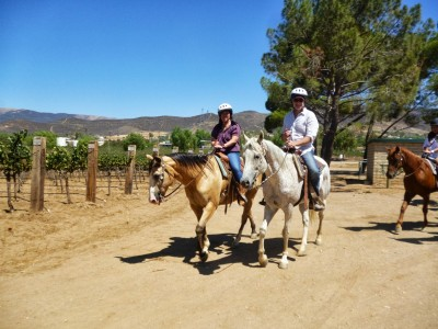 8.11.13 Vineyard Trail Ride,Barrel Tasting & Tour 016 resized