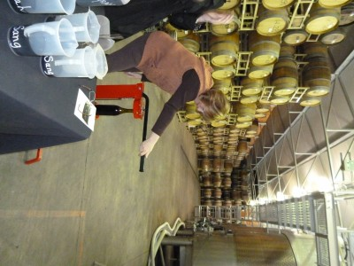 Winemaking  Experience March 24 2012 015